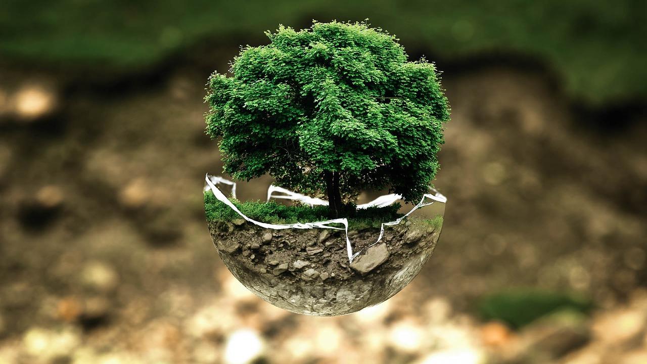 RH développement durable