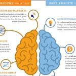 Infographie : que se passe-t-il dans le cerveau d'un RH ?
