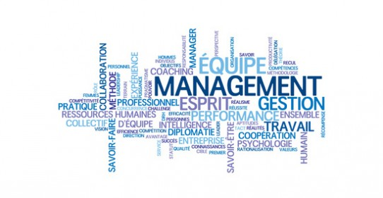 Lean management versus management agile